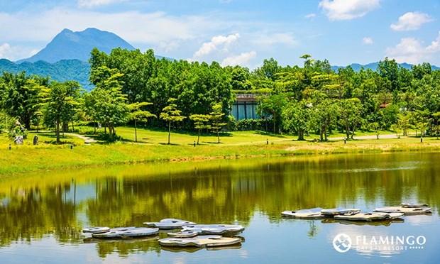 2017年森林艺术节开幕 多国艺术家汇聚越南 hinh anh 2