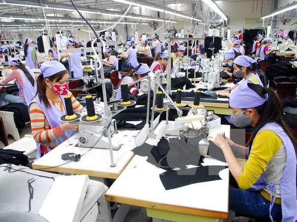 《越南与欧亚经济联盟自由贸易协定》生效一年后成效显著 hinh anh 1