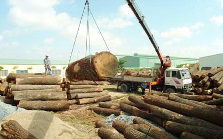2017年越南木材和木制品出口额有望突破80亿美元大关 hinh anh 1