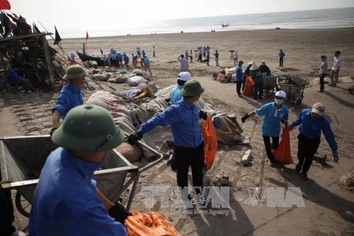 越南致力促进海洋权益保护的国际合作 hinh anh 1