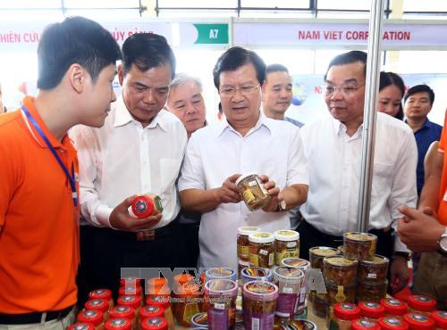 政府副总理郑廷勇参观2017年越南查鱼和水产品展 hinh anh 1