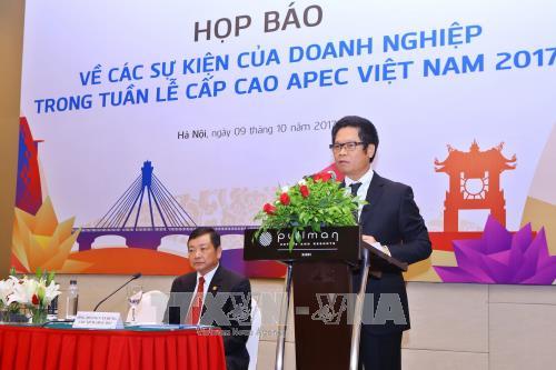 2017年APEC会议:越南工商峰会将于11月在岘港市举行 hinh anh 1