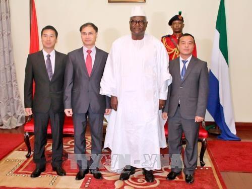 越南与塞拉利昂加强多方面合作 hinh anh 2