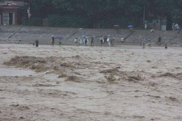 越南各地出现特大暴雨 造成重大人员伤亡和财产损失 hinh anh 3