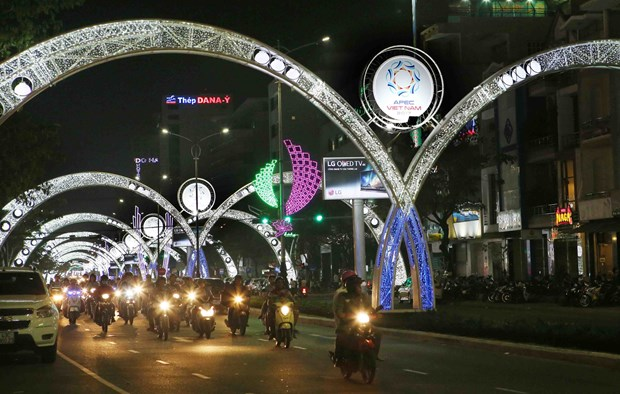 岘港市加大2017年APEC会议的宣传力度 hinh anh 1