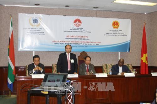 越南与南非促进投资合作 hinh anh 1