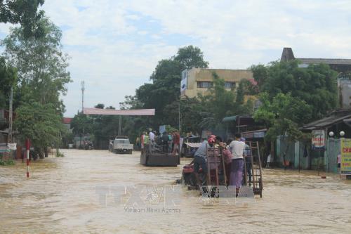 遭洪水袭击河内市数千公顷农作物被淹 清化省14人死亡 hinh anh 1