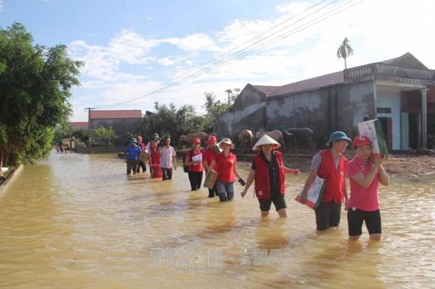 遭洪水袭击河内市数千公顷农作物被淹 清化省14人死亡 hinh anh 2
