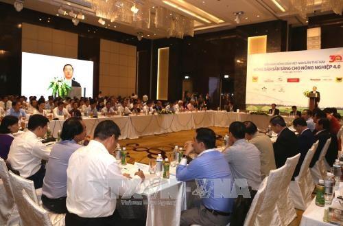 越南政府副总理王廷惠:农民决定越南未来农业面貌 hinh anh 2