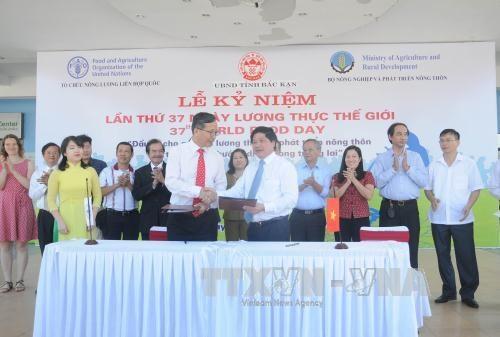 越南2017年世界粮食日纪念活动在北件省举行 hinh anh 1