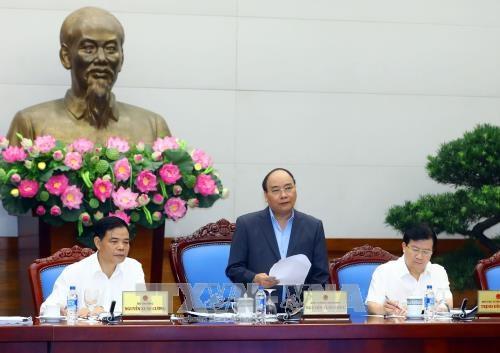 越南政府总理阮春福: 对非法砍伐森林相关责任人员进行责任追究 hinh anh 1