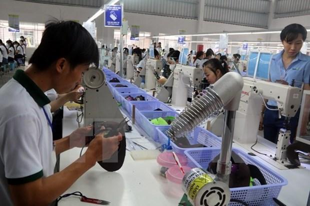 越南企业和企业家与国家一道融入世界 hinh anh 1