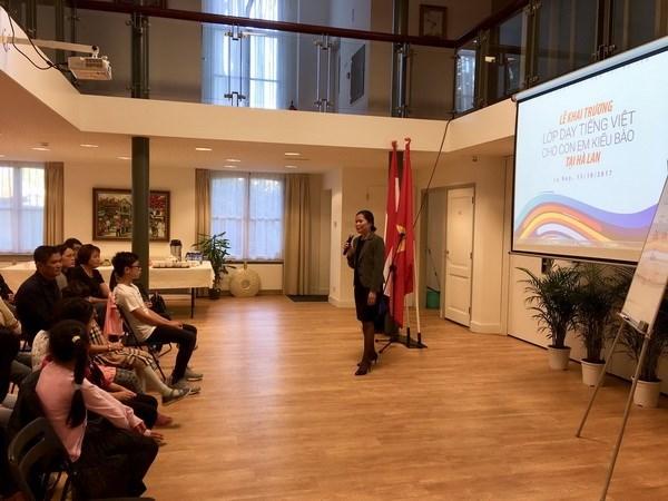 越南驻荷兰大使馆为旅荷越侨子女开设越南语培训班 hinh anh 1