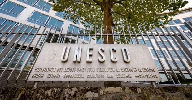 越南是成功开展UNESCO各项活动的典范之一 hinh anh 1