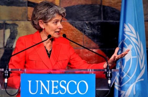 越南是成功开展UNESCO各项活动的典范之一 hinh anh 2