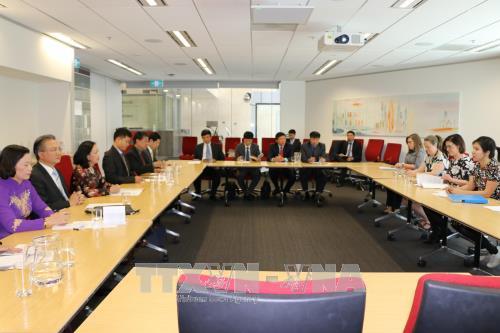 越共中央民运部长张氏梅:澳大利亚在越南对外政策中扮演着举足轻重的角色 hinh anh 2