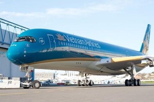 越航飞机在印度紧急降落 对乘客进行急救 hinh anh 1