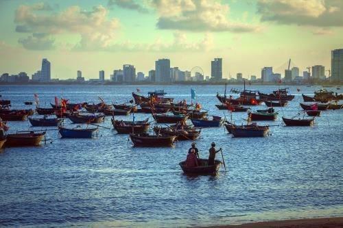 岘港市力争发展成为全国乃至地区的海洋经济中心 hinh anh 1