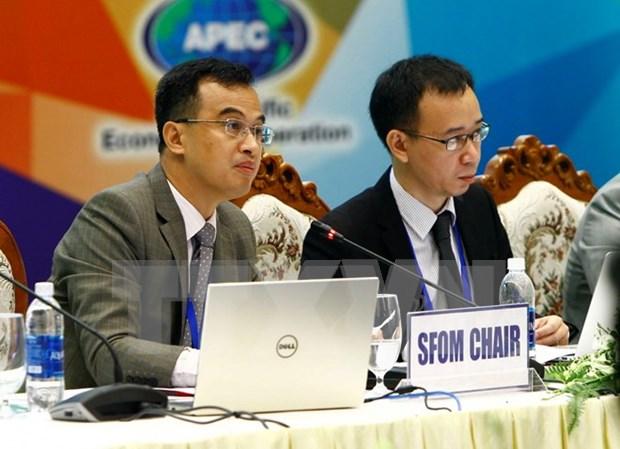 2017年越南APEC财政高官会在广南省举行 hinh anh 1