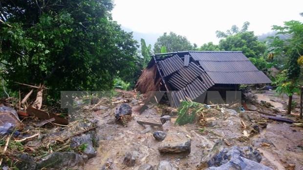 日本政府向遭受洪灾影响的越南灾区提供紧急援助 hinh anh 1