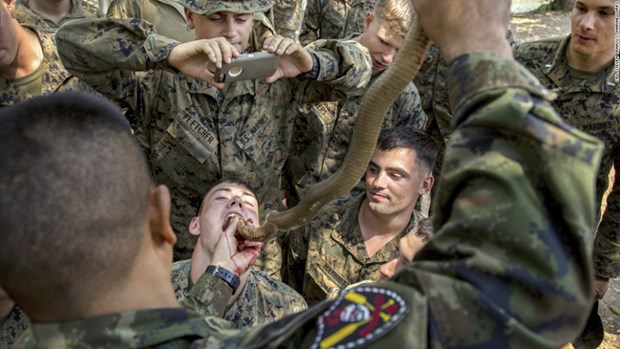 """泰国与美国联合举办的""""金色眼镜蛇""""军演将于明年2月举行 hinh anh 2"""