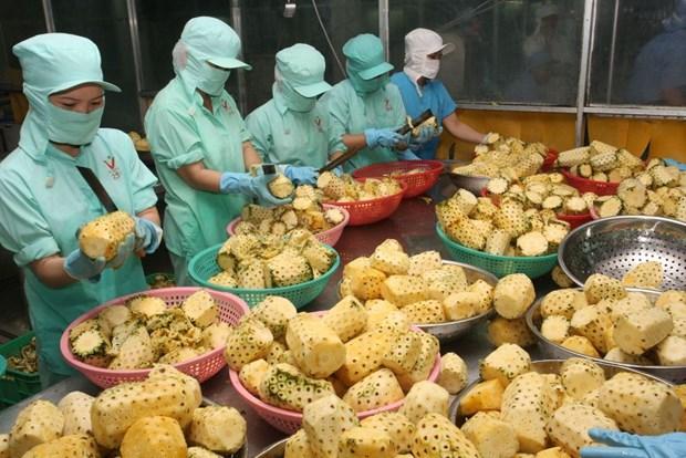 为越南农产品进军中东市场铺路 hinh anh 1