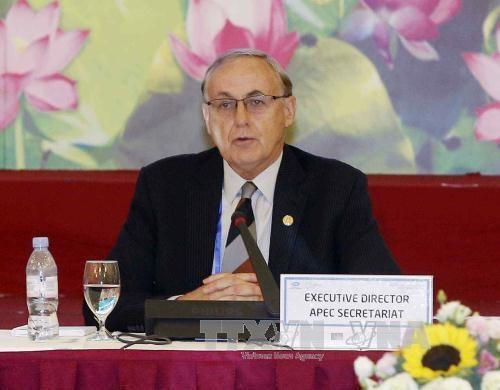 亚太经合组织秘书处执行长:越南为引领APEC的未来作出贡献 hinh anh 1