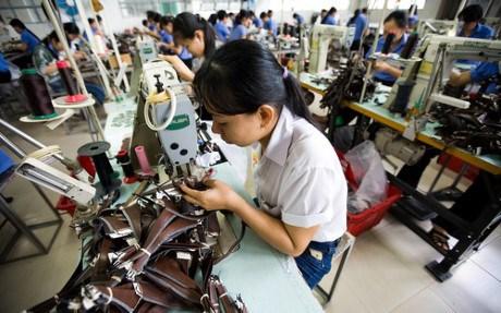 提高越南经济的竞争力 hinh anh 2