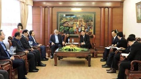 越南与伊朗促进经贸合作 hinh anh 1