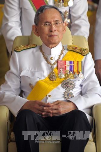 国家副主席邓氏玉盛代表越南出席已故泰国国王普密蓬·阿杜耶德葬礼 hinh anh 2