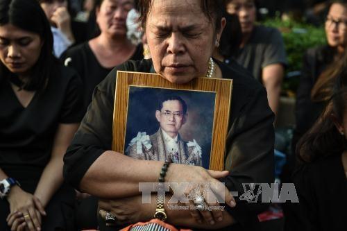 国家副主席邓氏玉盛代表越南出席已故泰国国王普密蓬·阿杜耶德葬礼 hinh anh 1