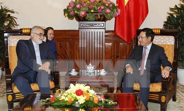 范平明副总理会见伊朗议会国家安全和外交政策委员会主席布鲁杰迪 hinh anh 1