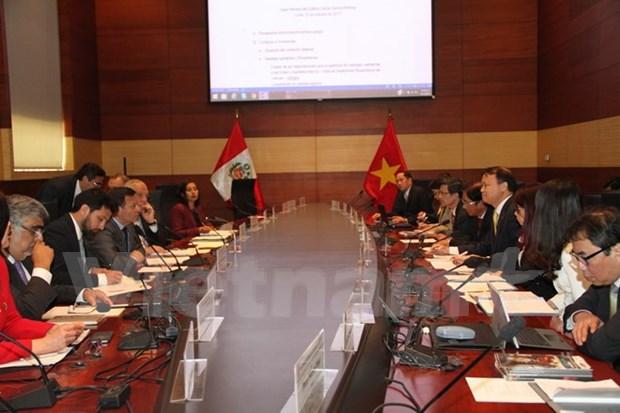 秘鲁与越南政府间经济与技术合作委员会第一次会议在秘鲁举行 hinh anh 1