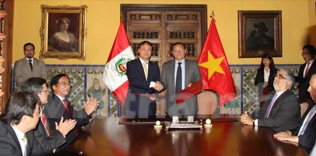 秘鲁与越南政府间经济与技术合作委员会第一次会议在秘鲁举行 hinh anh 2