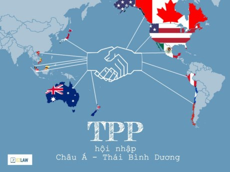 TPP的11个参加国将于下周在日本召开会议 hinh anh 1