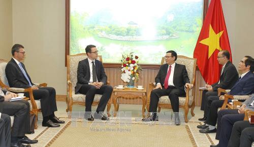 政府副总理王廷惠:希望国内外投资商对机场及航空港基础设施建设进行投资 hinh anh 1