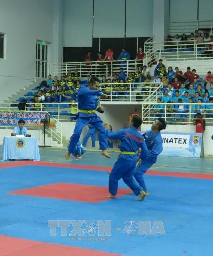 第25届全国越武道锦标赛开幕 hinh anh 1