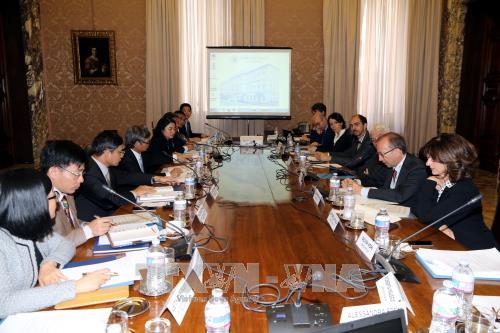 越南与意大利加强财务监督领域的合作 hinh anh 1