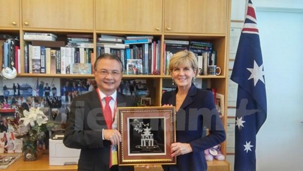 越南与澳大利亚努力将双边关系提升到新水平 hinh anh 1