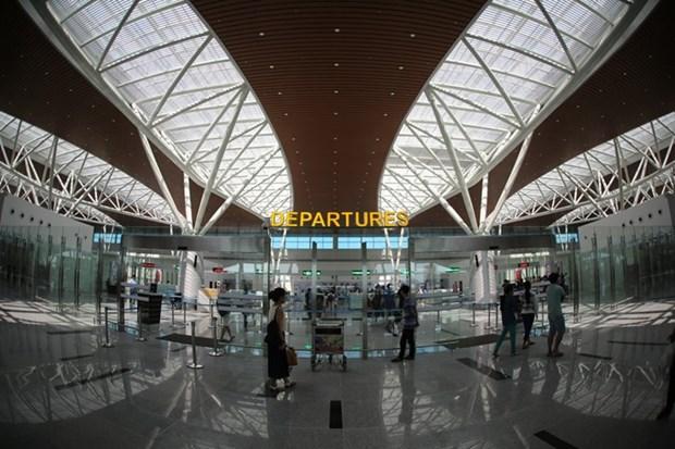 岘港市为2017年APEC领导人会议周做好准备 hinh anh 1