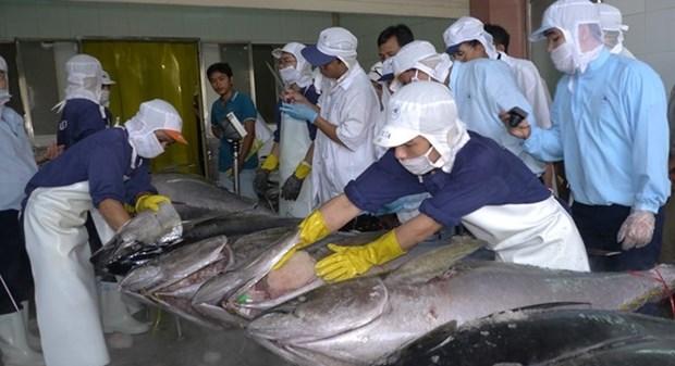 越南严格执行水产品进口国的规定 hinh anh 1