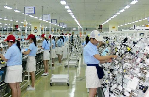 槟椥省力争实现到2020年企业数量达5千家的目标 hinh anh 1