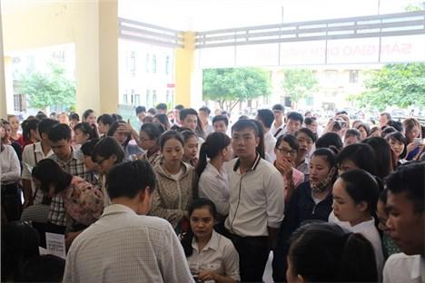 年初至今乂安省为近2.9万人解决就业问题 hinh anh 1