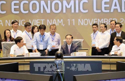 国家主席陈大光对2017年APEC领导人会议周各项活动进行总审 hinh anh 3