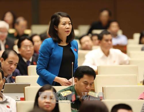 越南第十四届国会第四次会议公报(第六号) hinh anh 1