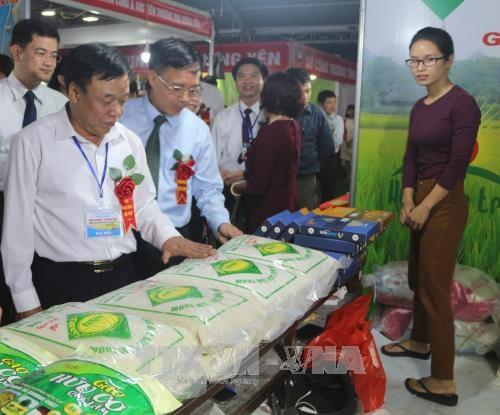 2017年河南省—红河平原地区工贸展销会在河南省开展 hinh anh 2