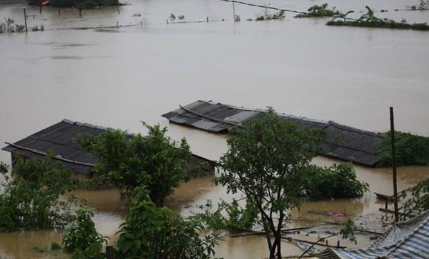 政府总理阮春福呼吁全国同胞和自然灾害防御力量主动应对自然灾害 hinh anh 1