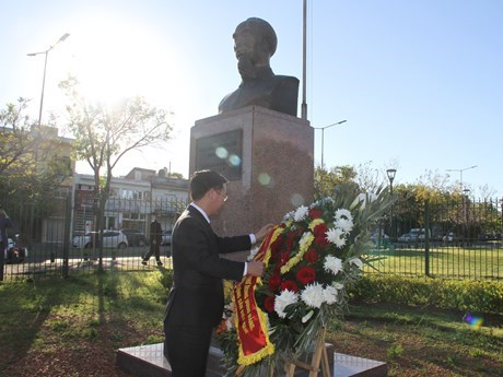 越南共产党代表团对阿根廷进行工作访问 hinh anh 3