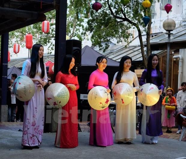 2017年越南日活动在新西兰惠灵顿举行 hinh anh 2