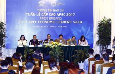 越南外交部就2017年APEC领导人会议周对外发布新闻公告 hinh anh 1